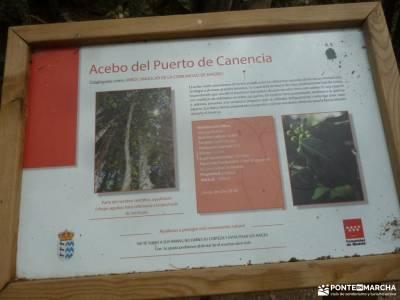 Canencia-Mojonavalle-Sestil de Maillo;escapadas sierra de madrid río guadarrama sierra de cabrera b